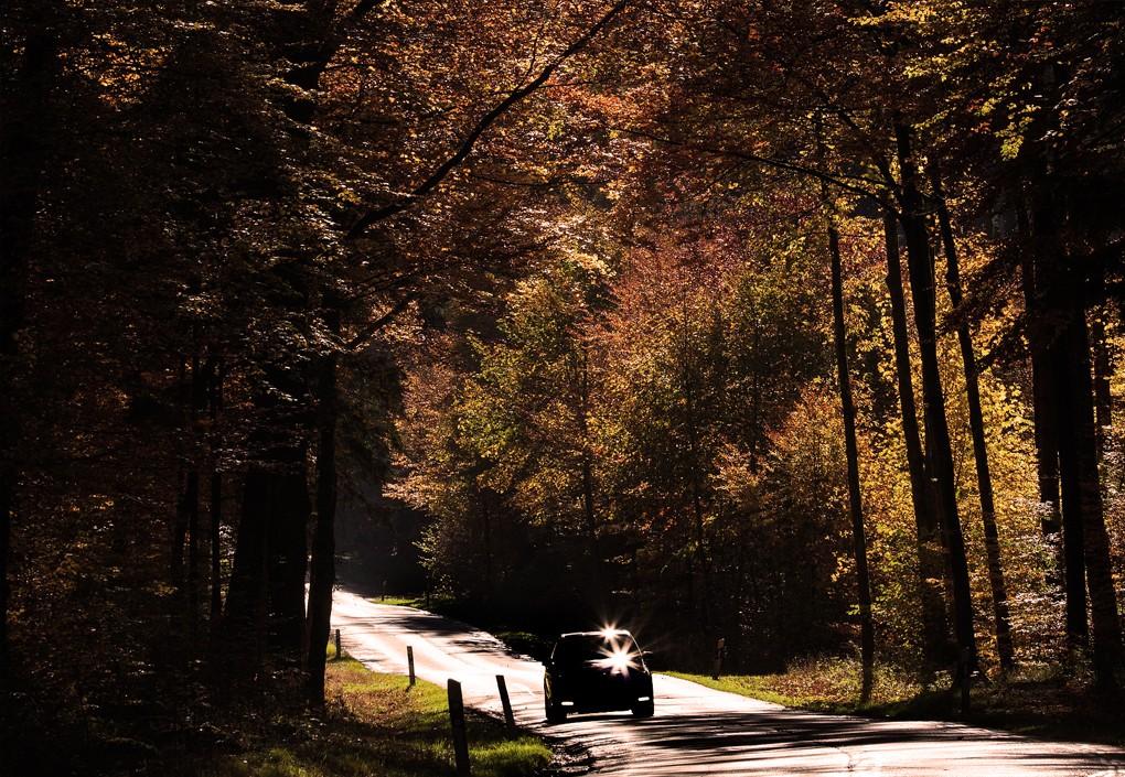 alt jak jeździć jesienią